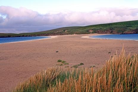 St Ninians Isle tomobolo (foto: Kirsti Jareg)