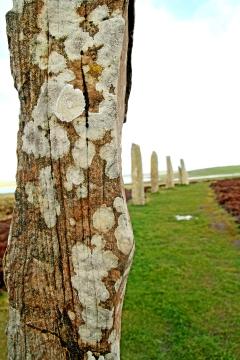 Ring o'Brodgar, Orkney