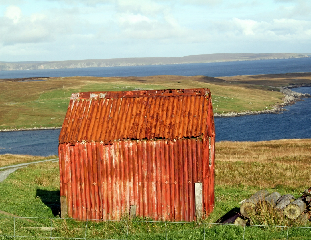 Shetland (Photo/Copyright: Kirsti MacDonald Jareg)