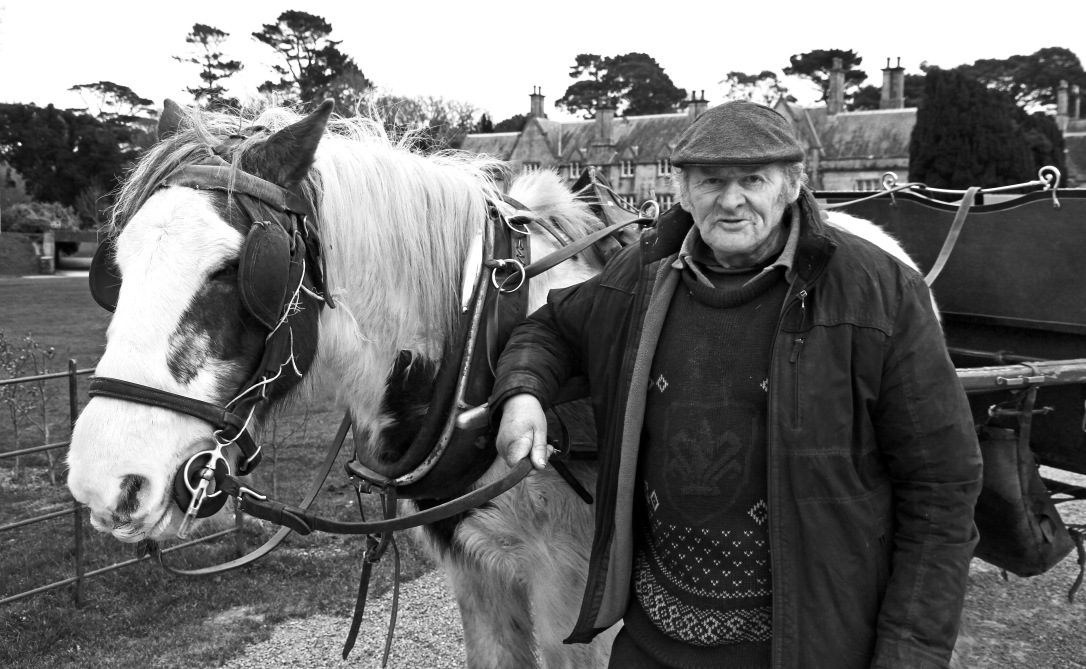 Mr. Tangney and his horse Susie, Kilarney