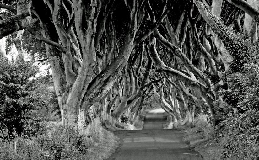 Mine reisetips fra Irland nr.6