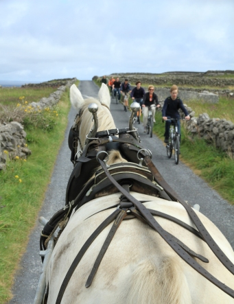 Aran Islands (Photo: Kirsti MacDonald Jareg)